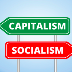 What are some ways in which the United States of America is socialist?
